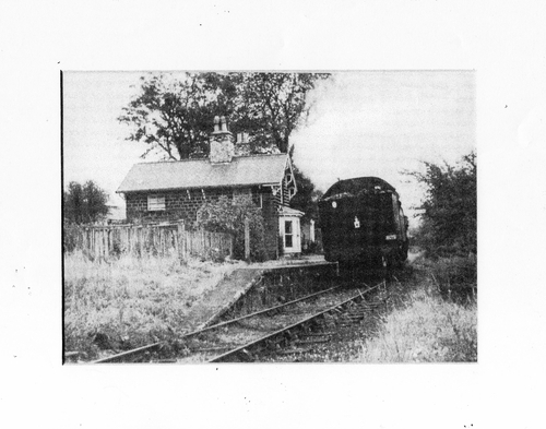 Link to http://archive.hampsthwaite.org.uk/history/images/1000/Station002.jpg