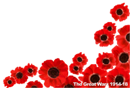 WW1 Poppies