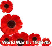 WW2 Poppies